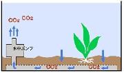 小さな大自然仕組み01